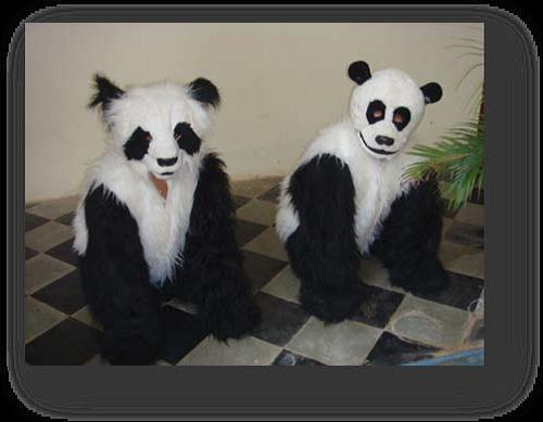 Our dance to create awareness of the Giant Panda in Tibet